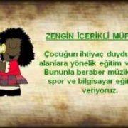 zengin(1)
