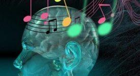 muzik-insan