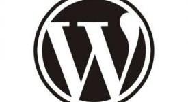 wordpress-logo-540×334