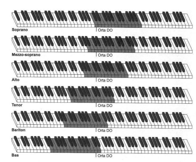 İnsan Sesleri