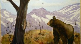 black-bear-and-the-bee-tree-lawrence-welegala