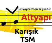 Karışık Türk Sanat Müziği (Altyapı) 5