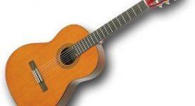 Gitar Kulübü Yıl Sonu Raporu 1