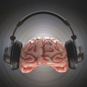 Müzik Dersi Etkinlikleri 5