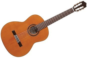 Gitar ve Gitar Eğitimi 1